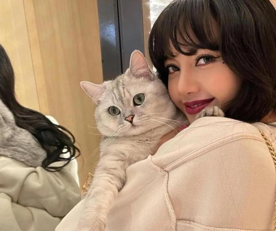 Lisa de Blackpink mujer y gato
